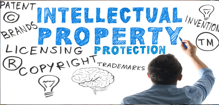 Intellectual Property Rights Consultant